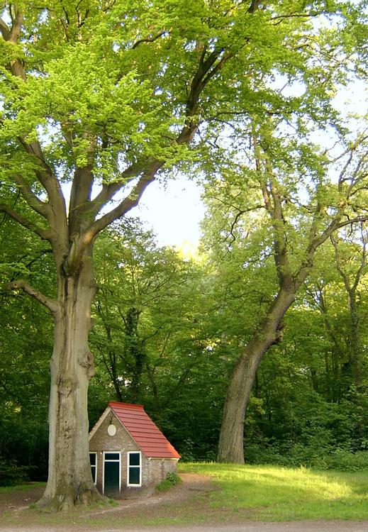 Kabouterhuisje - Peter van Lieshout