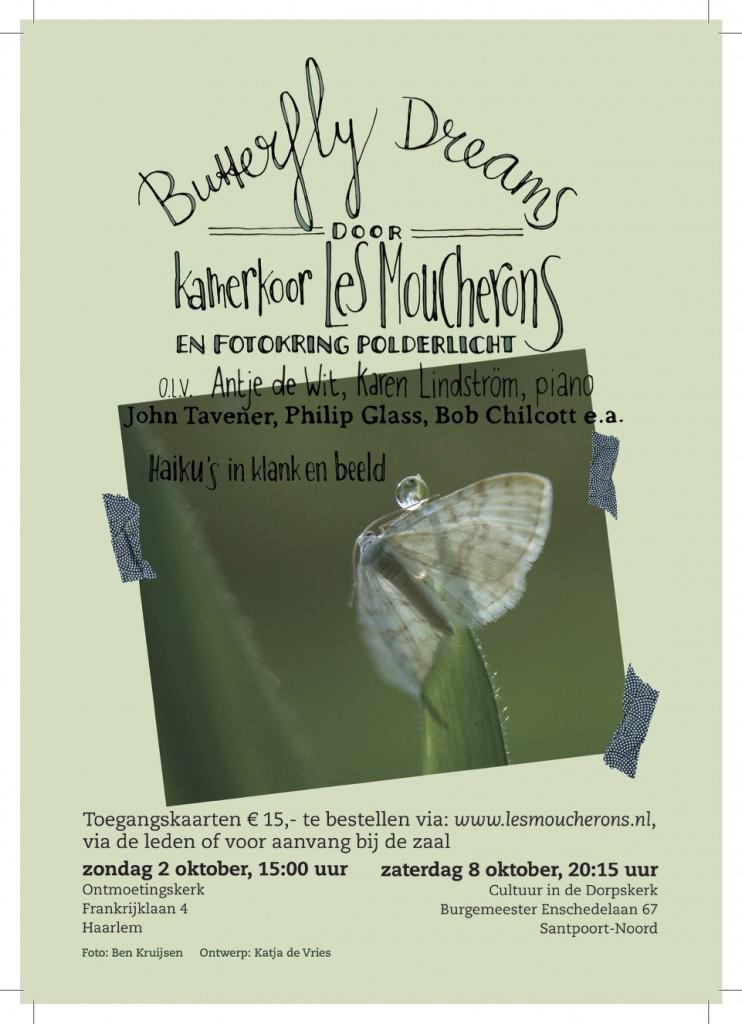 Flyer Butterfly Dreams